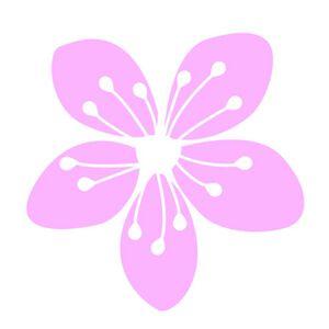 Home Visit Massage - Poppy
