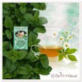 Earth Mama Organics - Stress Less Tea
